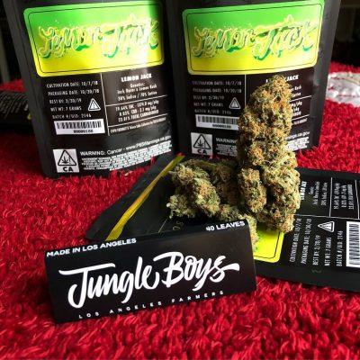 Jungle boys for sale online at darkmarkete.com