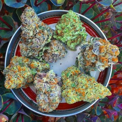 BUY WEED ONLINE order directly at https://onlinecannabisfarm.com